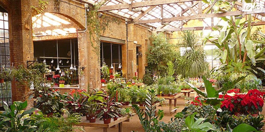 hivernacle centre de jardineria en barcelona parque